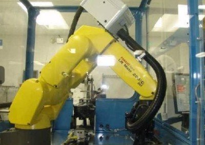Fanuc LR Mate 200iC R-30iA Chip IC Testing Packaging System